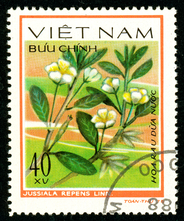 Ukraine - circa 2018: A postage stamp printed in Vietnam shows drawing flower Jussiaea repens. Series: Aquatic flowers. Circa 1978. 報道画像