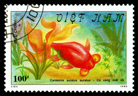 Ukraine - circa 2018: A postage stamp printed in Vietnam shows drawing fish Bubble Eye Goldfish or Carassius auratus auratus. Series: Fish - Goldfish, Veil-tailed. Circa 1990. Sajtókép