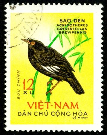 Ukraine - vers 2018: Un timbre imprimé au Vietnam montre un oiseau à crête Myna ou Acridotheres cristatellus. Série: Birds. Circa 1963.
