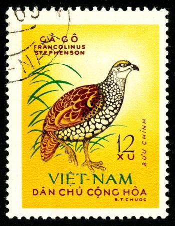 Ukraine - vers 2018: Un timbre imprimé au Vietnam montre un oiseau Francolin chinois ou Francolinus pintadeanus. Série: Birds. Circa 1963. Éditoriale
