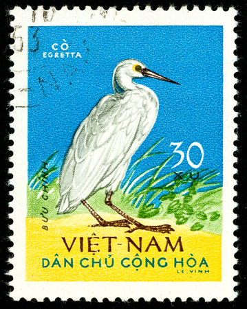 Ukraine - circa 2018: A postage stamp printed in Vietnam shows bird Pacific Reef Heron or Egretta sacra. Series: Birds. Circa 1963. Éditoriale