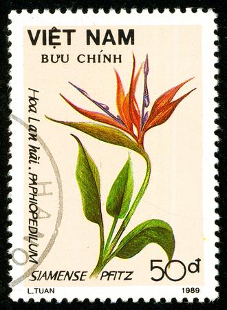 Ukraine - circa 2018: A postage stamp printed in Vietnam shows flower Strelitzia reginae. Series: Flowers. Circa 1989. Éditoriale