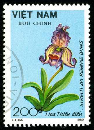 Ukraine - circa 2018: A postage stamp printed in Vietnam shows flower Paphiopedilium siamense. Series: Flowers. Circa 1989.