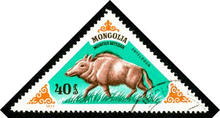 Ukraine - circa 2018: A postage stamp printed in Mongolia shows Extinct specie of pig Entelodon. Series: Prehistoric Animals. Circa 1977. Éditoriale