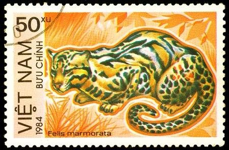 Ukraine - circa 2018: A postage stamp printed in Vietnam show Marbled Cat or Felis marmorata. Series: Endangered Animals. Circa 1984. Éditoriale