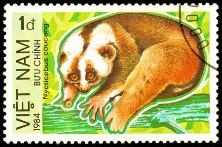 Ukraine - circa 2018: A postage stamp printed in Vietnam show Sunda Slow Loris or Nycticebus coucang. Series: Endangered Animals. Circa 1984. Éditoriale