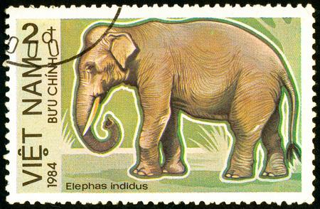 Ukraine - circa 2018: A postage stamp printed in Vietnam show Asian Elephant or Elephas maximus. Series: Endangered Animals. Series: Birds. Circa 1984.
