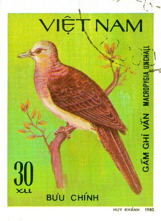 Ukraine - circa 2018: A postage stamp printed in Vietnam show Barred Cuckoo-dove or Macropygia unchall. Series: Doves. Circa 1980. Éditoriale