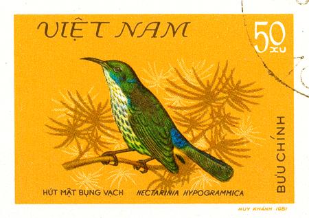 Ukraine - circa 2018: A postage stamp printed in Vietnam show bird Purple-naped Sunbird or Hypogramma hypogrammicum. Series: Birds. Circa 1981. Éditoriale