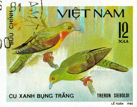Ukraine - circa 2018: A postage stamp printed in Vietnam show White-bellied Green-pigeon or Treron sieboldii.. Series: Doves. Circa 1980.