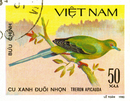 Ukraine - circa 2018: A postage stamp printed in Vietnam show Pin-tailed Green-pigeon or Treron apicauda. Series: Doves. Circa 1980. Éditoriale