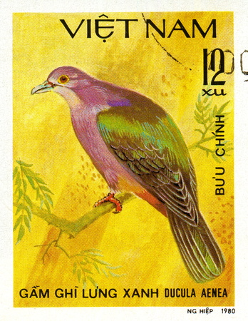 Ukraine - circa 2018: A postage stamp printed in Vietnam show Green Imperial-pigeon or Ducula aenea. Series: Doves. Circa 1980.