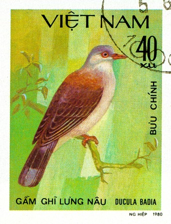 Ukraine - circa 2018: A postage stamp printed in Vietnam show Mountain Imperial-pigeon or Ducula badia. Series: Doves. Circa 1980.