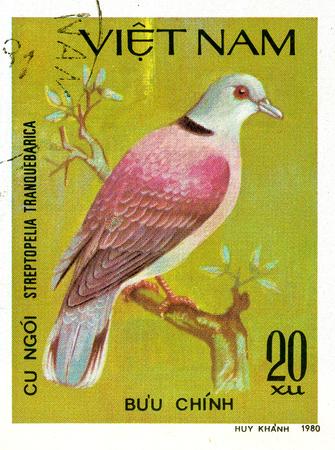 Ukraine - circa 2018: A postage stamp printed in Vietnam show Red Turtle-dove or Streptopelia tranquebarica. Series: Doves. Circa 1980. Éditoriale