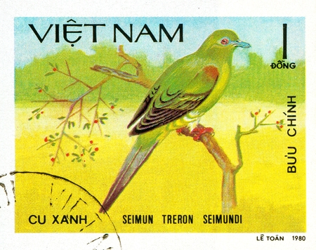 Ukraine - circa 2018: A postage stamp printed in Vietnam show Yellow-vented Green-pigeon - Treron seimundi. Series: Doves. Circa 1980.