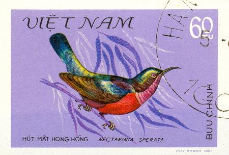 Ukraine - circa 2018: A postage stamp printed in Vietnam show bird Purple-throated Sunbird or Leptocoma sperata. Series: Birds. Circa 1981.