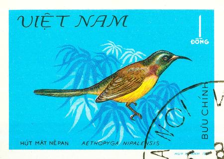 Ukraine - circa 2018: A postage stamp printed in Vietnam show bird Green-tailed Sunbird or Aethopyga nipalensis. Series: Birds. Circa 1981. Éditoriale