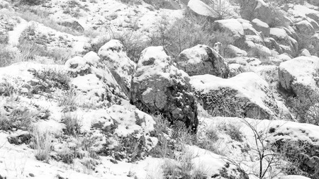 A landscape with stone boulders. Frost. Fog. The bushes are covered with frost. Soft focus Banque d'images - 94270619