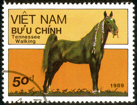 Ukraine - circa 2018: A postage stamp printed in Vietnam show horse of the breed Tennessee Walking Horse or Equus ferus caballus. Series: Horses. Circa 1989. Sajtókép