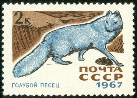 Ukraine - circa 2018: A postage stamp printed in USSR show Arctic Fox or Alopex Iagopus. Series: Fur-bearing Animals. Circa 1967. The postage stamp is not used. Soviet Union ceased to exist in 1991.