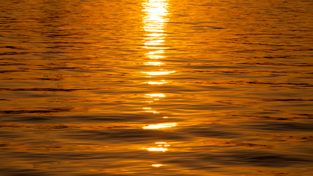 Sunset. A golden sunny path on the water Imagens