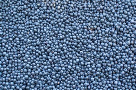 Ripe dark blue delicious berries blueberries, background, texture Banque d'images