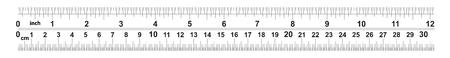 Regla de 12 pulgadas. Regla de 30 centímetros. Valor de división: 32 divisiones por pulgada y 0,5 mm. Dispositivo de medición de longitud precisa. Cuadrícula de calibración. Ilustración de vector