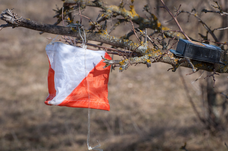 Orienteering. Check point Prism and electronic composter for orienteering close-up. Navigation equipment. The concept
