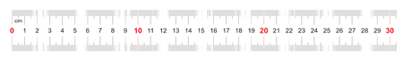 Ruler of 300 millimeters. Ruler of 30 centimeters. Calibration grid. Value division 1 mm. Precise length measurement device. Two-sided measuring instrument.