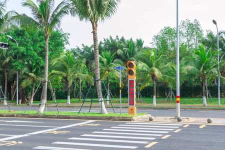 Haikou, China - May 12, 2019: View of the roadway. On the dividing line, green tropical palm trees are reinforced with metal structures to protect against frequent typhoons. Guided pedestrian crossing and traffic light