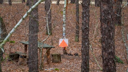 Orienteering. View of Checkpoint Prism and compost electronic and mechanical for orienteering in the autumn forest. Sports navigation equipment. Concept