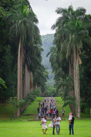 Kandy, Sri Lanka - May 29, 2016: Palm alley in Royal Botanic Gardens. Locals and tourists stroll through a very beautiful park.