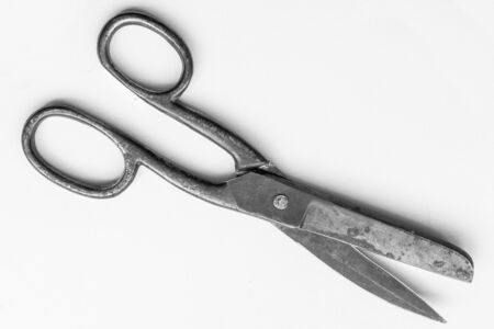 Old rusty big scissors on a gray background. Tool for the tailor. Banque d'images