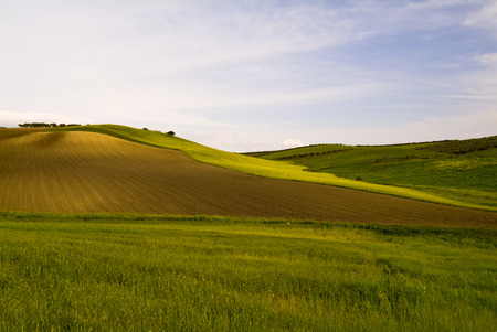 Wheat fields and hills, Apulia, Italy