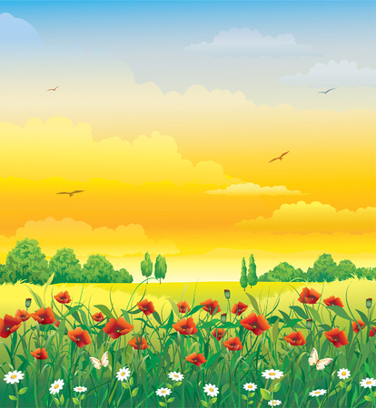 Natural landscape with flowers Ilustrace