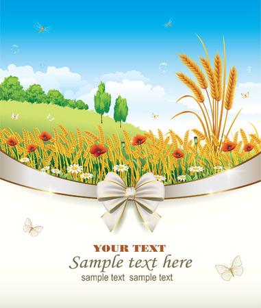 corn poppy: The design of the natural landscape