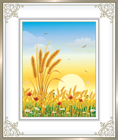 field of daisies: Natural landscape. wheat field with poppies and daisies at dawn Illustration