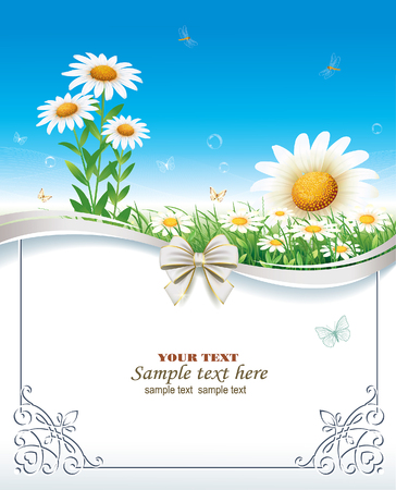 silver grass: Greeting card with daisies
