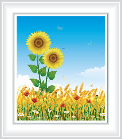 Landscape with wheat and sunflowers Illustration