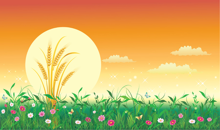Summer natural landscape. Vector illustration