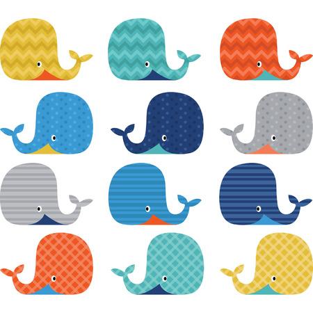 かわいいクジラのカラフルなコレクション  イラスト・ベクター素材