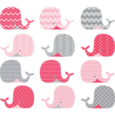 animal family: Pink and Grey Cute Whale Collections