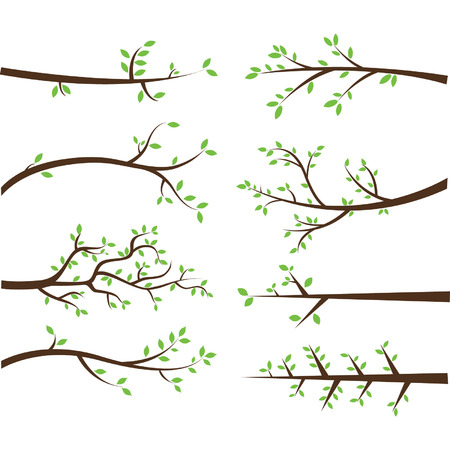 wedding border: Branch Silhouettes Elements