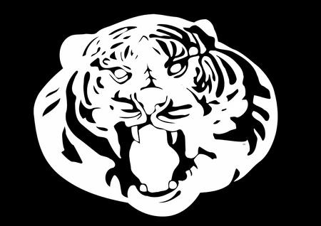 grandeur: white tiger, vector image
