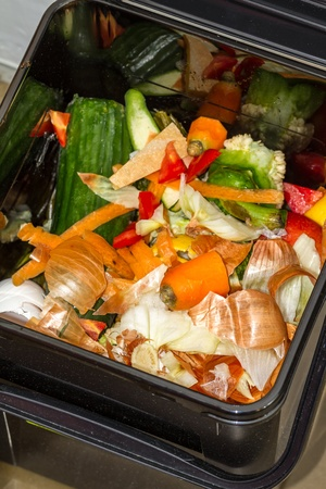 composting: Discarded food in a dustbin ready for composting including remnants of cucumber, carrot peelings and tops, onion skins, peppers, lettuce, and  tomatoes