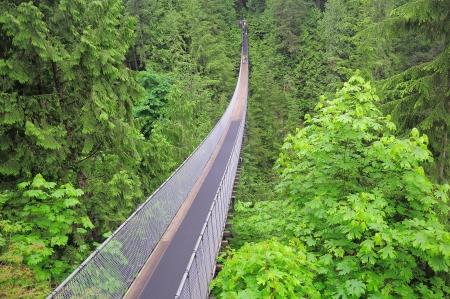 Capilano Bridge North Vancouver Canada Archivio Fotografico - 16525155