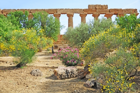 Valley of the Temples  Agrigento  Sicily Stock Photo - 16944958