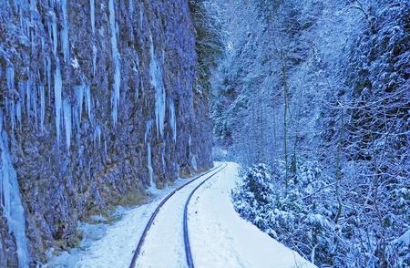 narrow gauge: Narrow gauge railway  Guama gorge  Caucasus  Russia