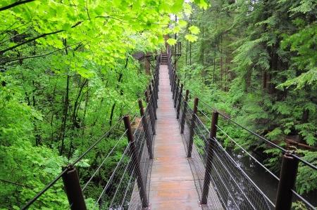 Suspension bridge   North Vancouver  Canada