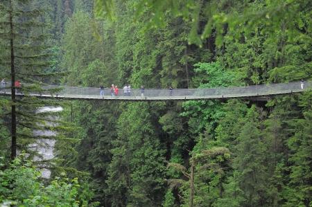 Capilano ponte North Vancouver Canada Archivio Fotografico - 17480664